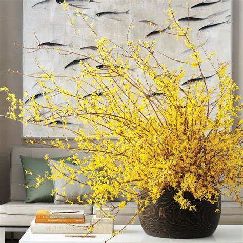 Halloween Decorations Pinterest Outdoor by Home Design Forsythia Martha Stewart