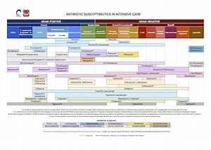 Antimicrobials  Spectrum Of Activity
