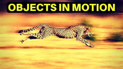 Objects In Motion: Using Newtons Law of Inertia To Win Big ...