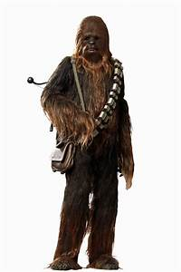 Hot Toys Star Wars Chewbacca Masterpiece Series 1:6 Scale