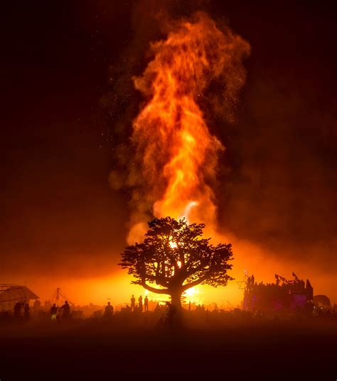 Firetree   A wicked fire... Burning Man, 2017 - Just ...