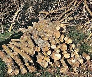 Bois De Chauffage Bricoman : comment faire son bois de chauffage avec la lune ~ Dailycaller-alerts.com Idées de Décoration