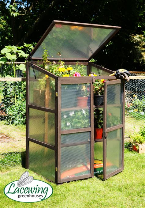 lacewing ft  ft double door wooden cold frame