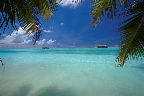 medhufushi island resort maldives tourism