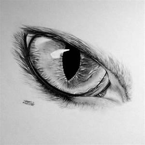Dessin Facile Yeux : 1001 photos de dessin noir et blanc qui vont vous aider am liorer votre technique ~ Melissatoandfro.com Idées de Décoration
