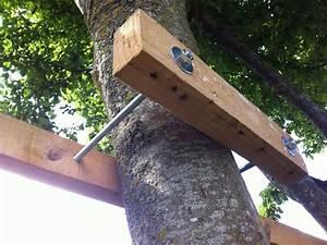 Comment Construire Une Cabane à écureuil : construire une cabane ii dans les arbres toysfab kbane pinterest construire cabane ~ Melissatoandfro.com Idées de Décoration