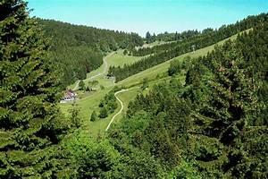 Sankt Andreasberg Rodelbahn : st andreasberg ~ Buech-reservation.com Haus und Dekorationen