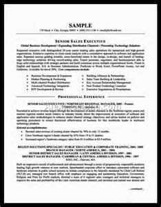 what s a resume cv title resumes cv resume title exles