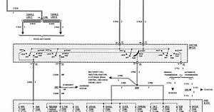 1981 Corvette Choke Diagram  Corvette  Wiring Diagrams