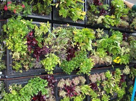 Edible Vertical Garden by Vertical Edible Garden Gardens I