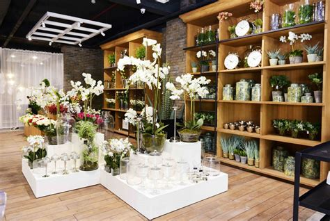 ahmedabad city updates marina home store launch femafest
