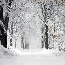 5x7ft winter snow scene forests outdoor backgrounds computer painted white floor wedding