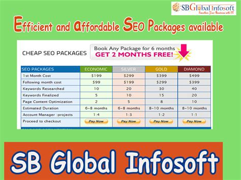 Search Engine Optimization Packages - sb global infosoft seo package india seo package seo