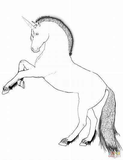 Unicorn Coloring Drawing Pages Rearing Printable Games