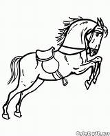 Horse Coloring Rocking Circus sketch template