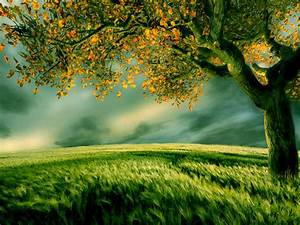 Nature, Quotes, 8, Wallpapers13, Com