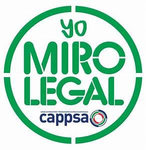 Argentina Cappsa Lanza Su Nueva Campa U00f1a Antipirater U00eda Mira Legal