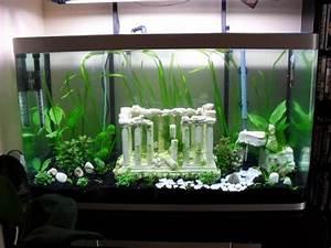 Idee Decoration Aquarium : mod le id e d co aquarium gratuit ~ Melissatoandfro.com Idées de Décoration