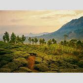 Indien Reisen  ...