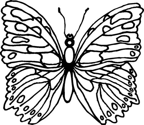 life cycle   butterfly coloring pages az coloring pages