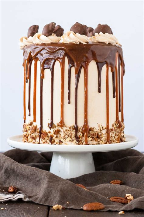 celebrate national chocolate cake day   candy covered