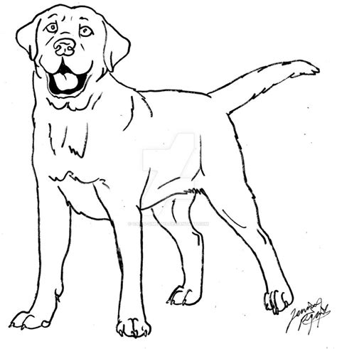 labrador coloring pages labrador coloring labrador coloring
