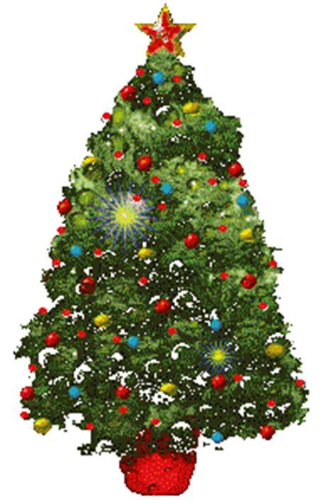 kerstbomen kerst bomen dennen boom dennebomen sparren