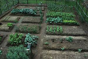 Gardening albertsons easy steps to start a vegetable for How to plant vegetable garden