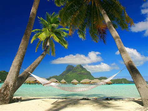 cuisine st andre bora bora the island tourist destinations