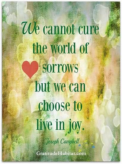 Joy Quotes Choose Happy Gratitudehabitat Inspirational Reunification