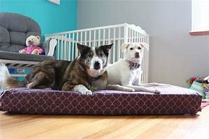 upcycle hack turn a crib mattress into a dog bed with With baby mattress dog bed