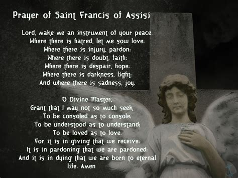 are we there yet happy feast of st francis