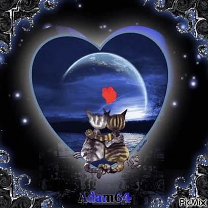 Moonlight Night Picmix