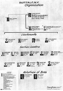Mafia In Buffalo New York Buffalo Mob Chart Crime