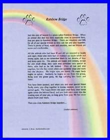 the rainbow bridge poem for cats rainbow bridge poem