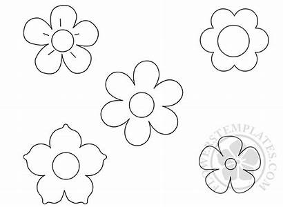 Template Flowers Flower Coloring Printable Paper Templates