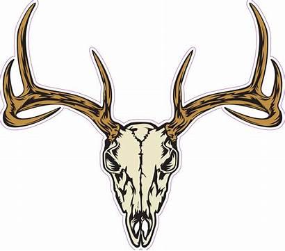 Skull Deer Head Sticker Vector Graphics Vectors
