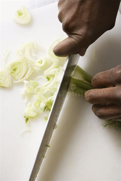 chopping fennel knife chopping fennel stock image image 2431731