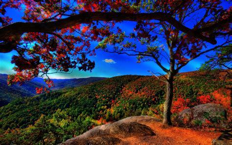 Beautiful Autumn Landscapes Wallpapers by 35 Best Free Wallpaper To The Wow Style