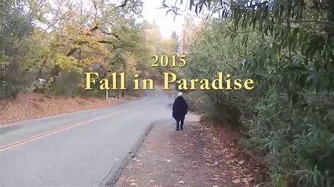 fall  paradise ca  youtube