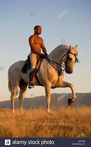 Black Man And White Horse Stock Photo