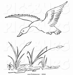 Printable Black And White Art Clip Art Of A Duck Flying