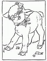 Lambs Coloring Pages Print Zoom sketch template