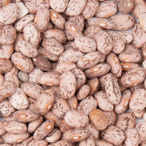 dried pinto beans  lb