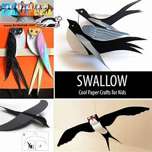 krokotak Black Cardboard SWALLOW