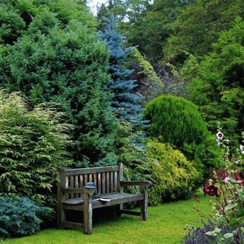 Garten Gestalten Immergrün by Immergr 252 Ne Gartenpflanzen Str 228 Ucher Und Hecke F 252 R Frische