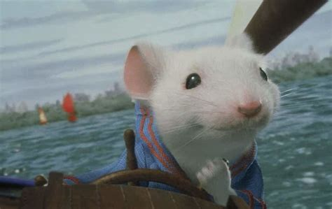 Stuart Little 1999 Movie Box Office Collection, Budget and ...