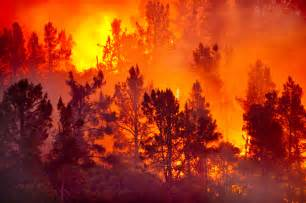 Natural Disasters Wildfires