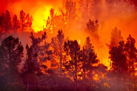 bureau appartement wildfires and topography what if a wildfire came near my