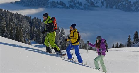 eine kleine expedition mit schneeschuhen lenk simmental